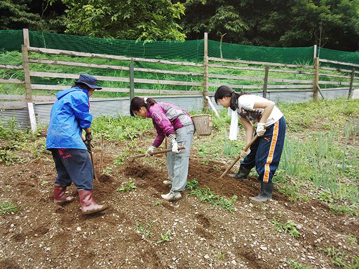 (埼玉県西部)「地域資源をしごとにする!」担い手育成3か年計画